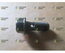 Болт крепления тормозного шланга М10х24