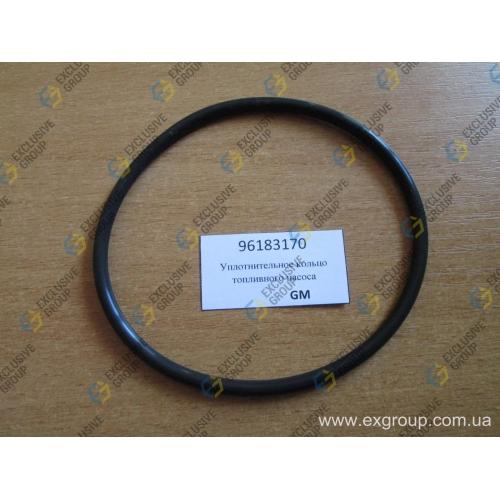 Уплотнительное кольцо топливного насоса