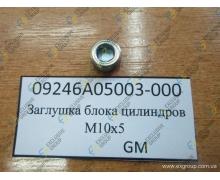 Заглушка блока цилиндров  М10х5 ( пробка резьбовая)